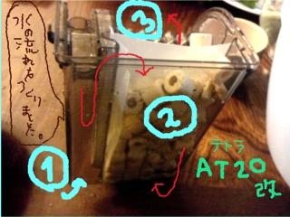 DSC_0033kaizou.jpg
