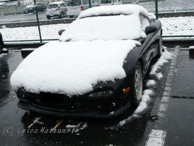 雪、積もってます(^^;)