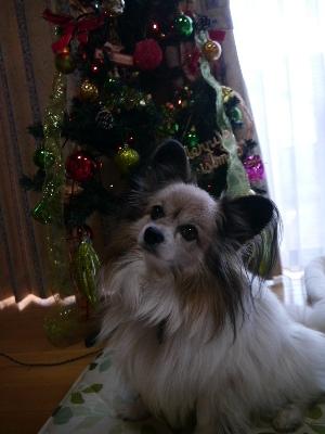 クリスマス8