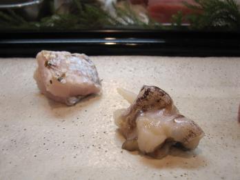 生鳥貝造り・太刀魚炙り