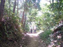 円海山を歩く