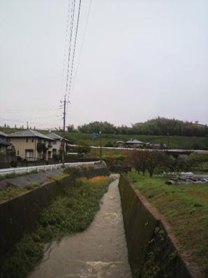P1001059.jpg
