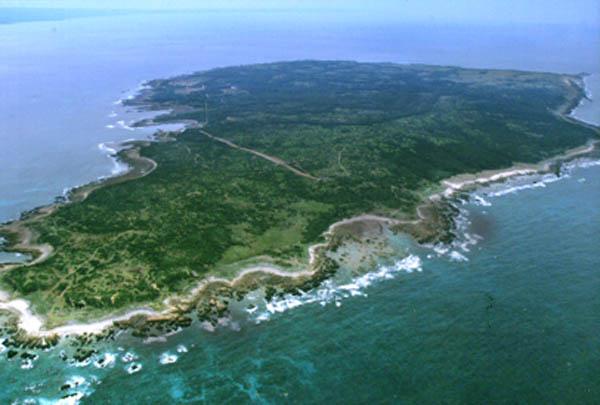 昔の馬毛島
