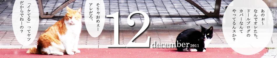 2011_12b.jpg