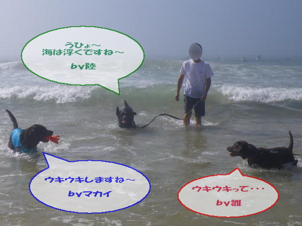 20100730_015.jpg
