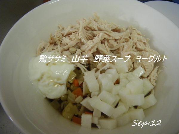 コピー (1) ~ IMGP0199