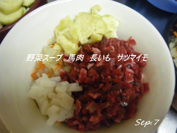 コピー (1) ~ IMGP0112