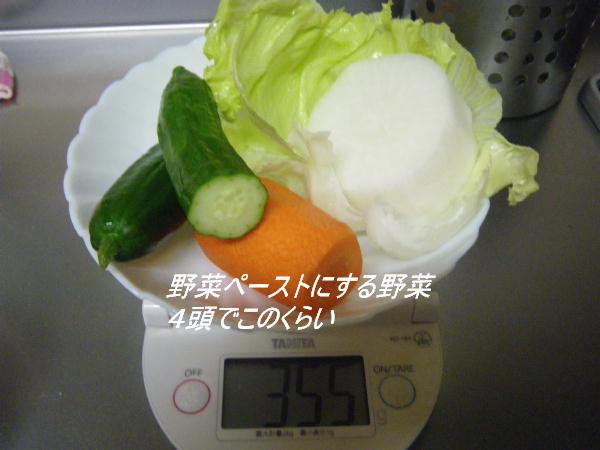 コピー (1) ~ IMGP0230