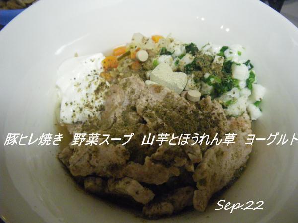 コピー (1) ~ IMGP0381
