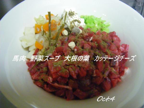 コピー (1) ~ IMGP0501