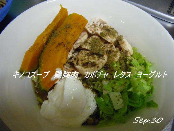 コピー (1) ~ IMGP0461