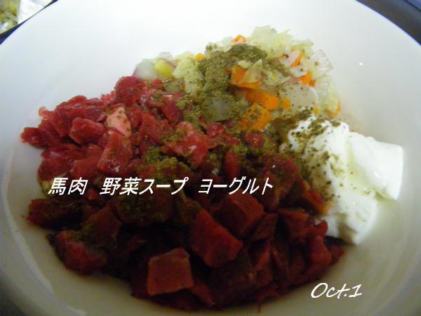 コピー (1) ~ IMGP0466
