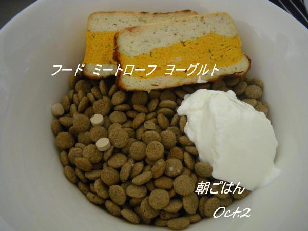 コピー (1) ~ IMGP0467