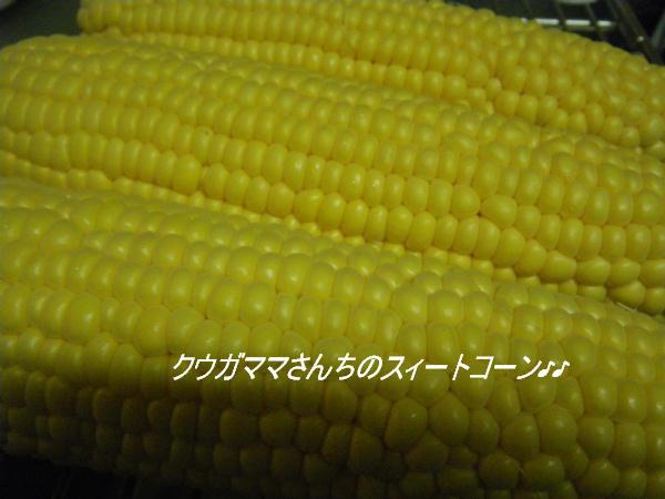 IMGP9861.jpg