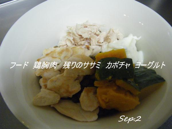 IMGP9958.jpg