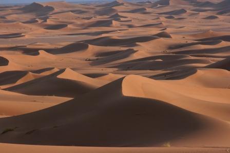 サハラ 砂丘