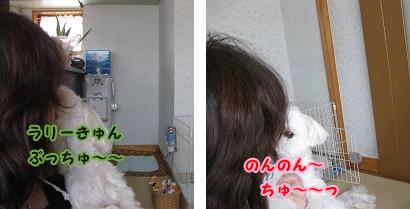 20100816-361.jpg