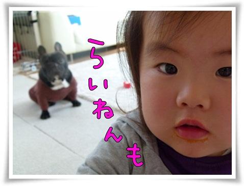 365_9.jpg