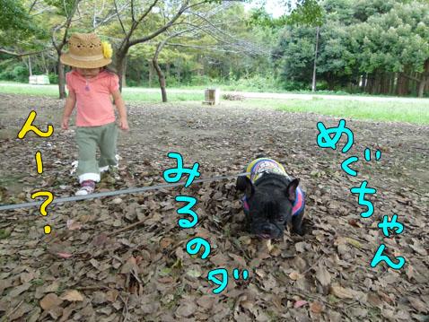 higanbuhi5.jpg