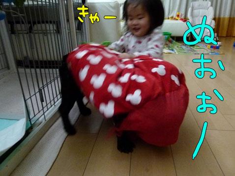ichigoman1.jpg