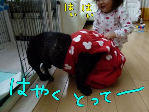 ichigoman2.jpg