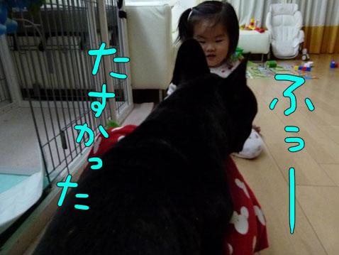 ichigoman3.jpg
