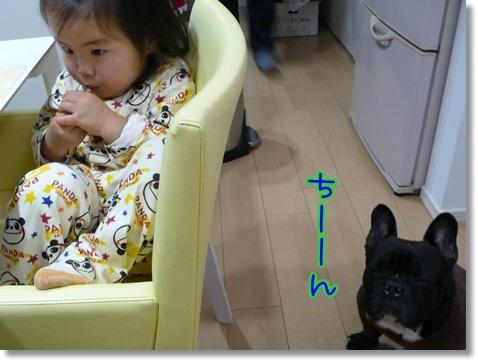 kaikiiwai4.jpg