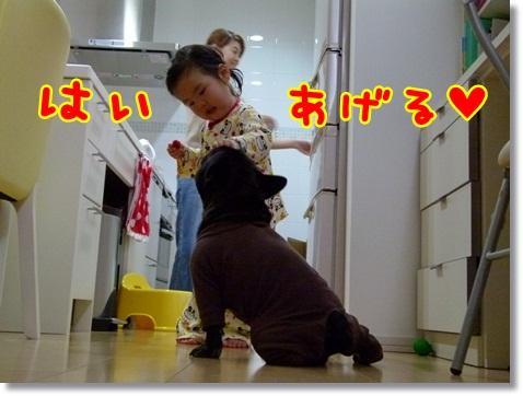 kaikiiwai9.jpg