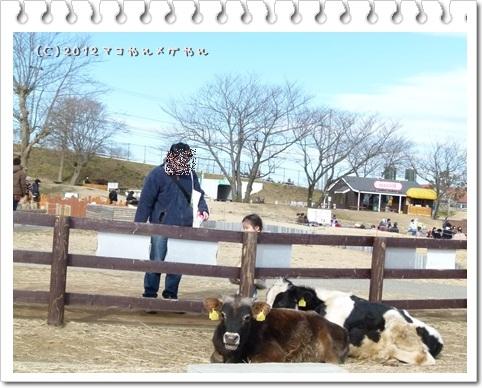 motherfarm8_20130122222313.jpg