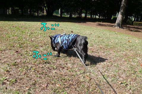 tisakuteokii4.jpg