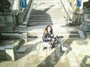 2411hatsumoude_convert_20120102160042.jpg