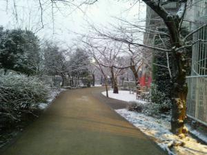 24202yuki_convert_20120203012821.jpg