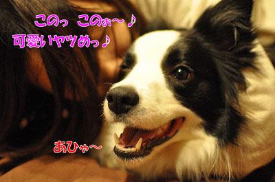 201105-jya01.jpg
