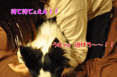 201105-jya03.jpg
