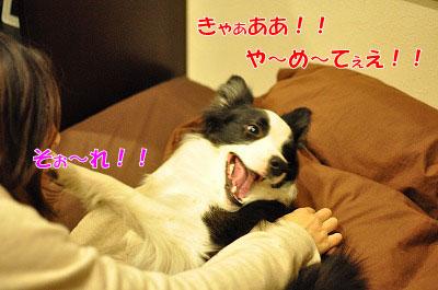 201105-jya04.jpg