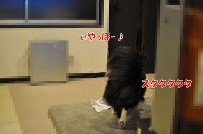 201105-nusu002.jpg