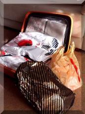 日暮里 スーツケース 中身