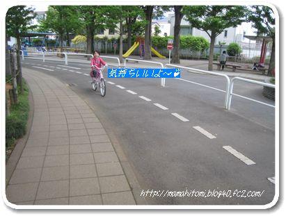 IMG_5540-1.jpg