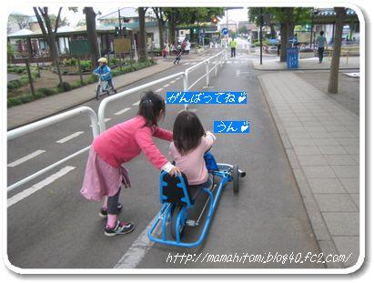 IMG_5573-1.jpg
