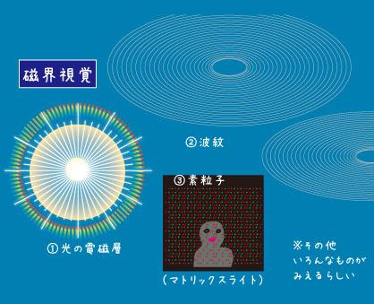 磁界視覚例
