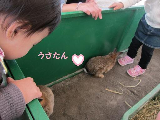 ayaka20111110_5