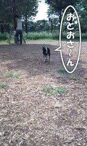 101003_toneri2.jpg