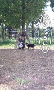 101003_toneri3.jpg