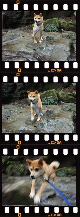 eight_jump.jpg