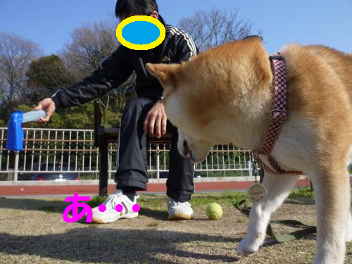 12040112.png