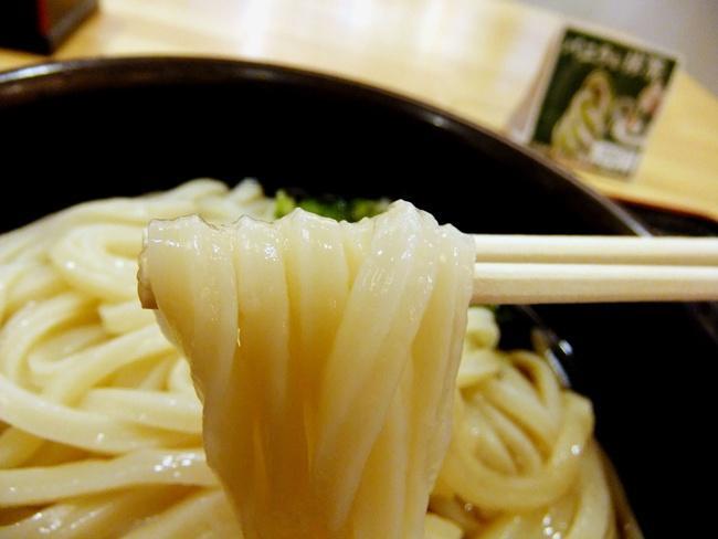 うどん 麺