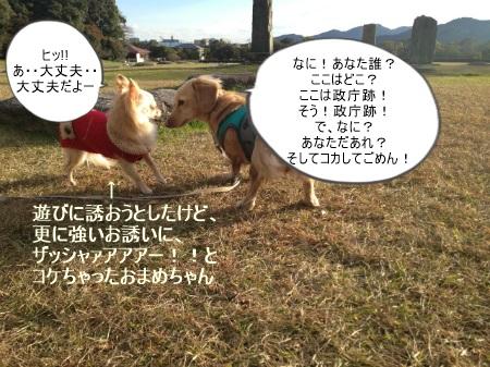new_131196856894.jpg