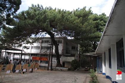 新竹神社251121 420_fcac2e76c156a12fbc192c2d1b225aab