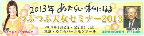 最終天女セミナー2013バナー