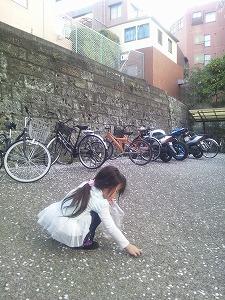 20120409_02.jpg